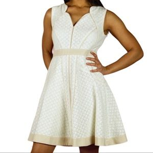 Ann Taylor Petite Eyelet Lace Fit & Flare Dress